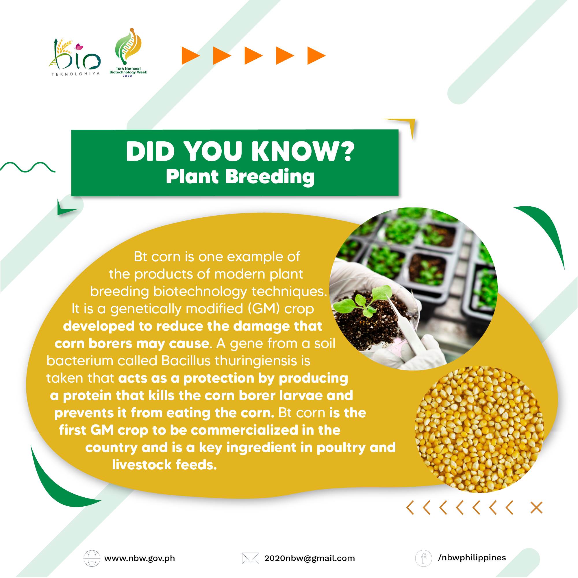 DID YOU KNOW - Plant Breeding