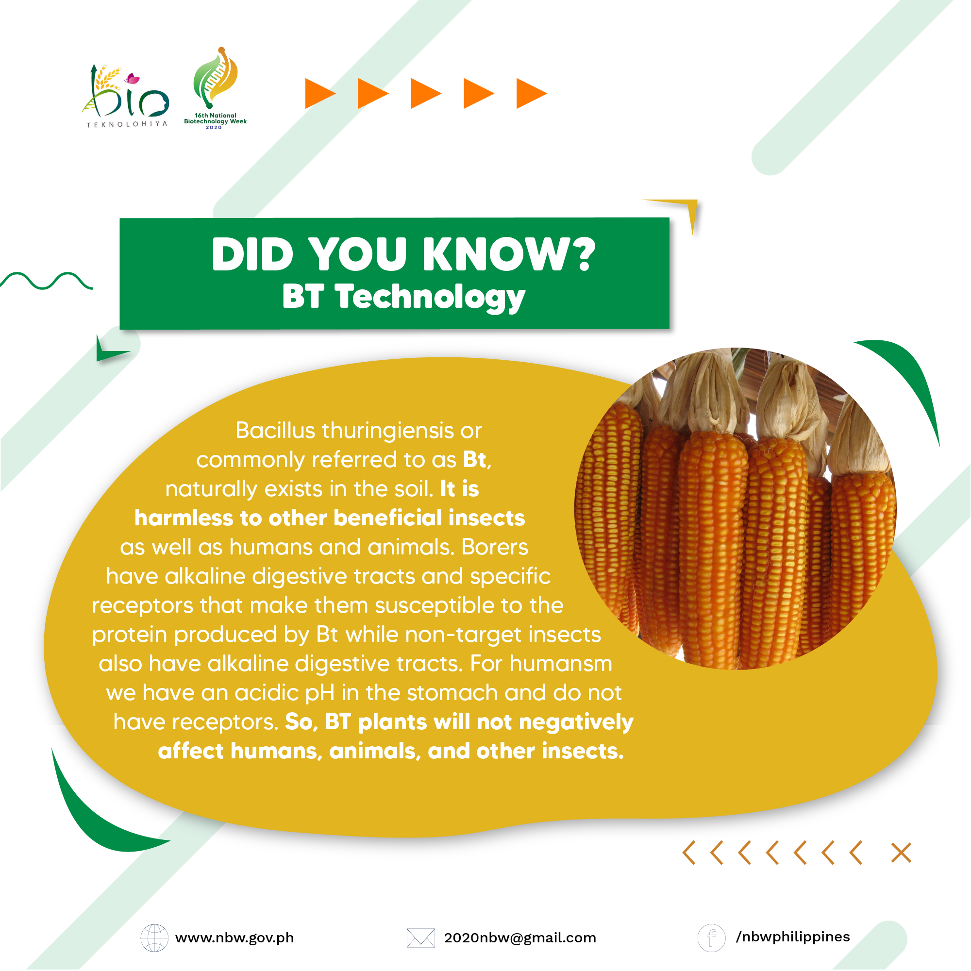 DID YOU KNOW - SEARCA-01